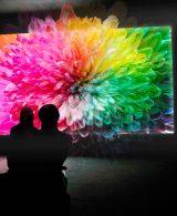 Come usare la teoria dei colori nel Visual Design.